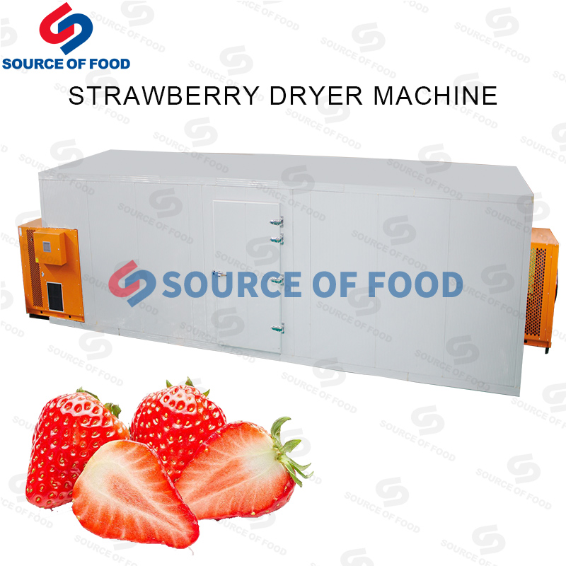 strawberry drying equipment supplier
