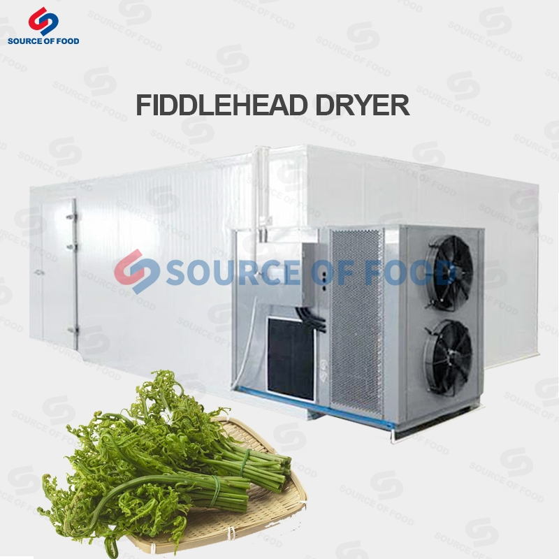 Fiddlehead Dryer