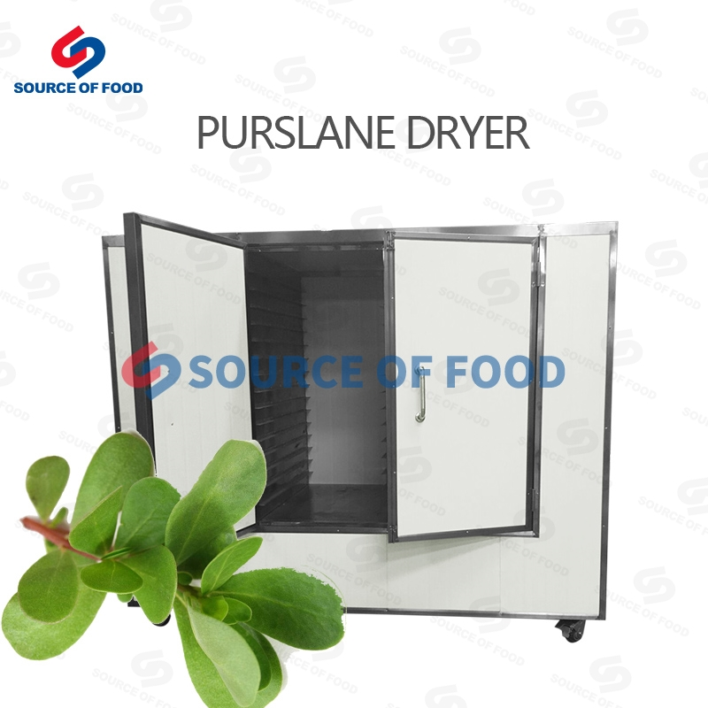 Purslane Dryer