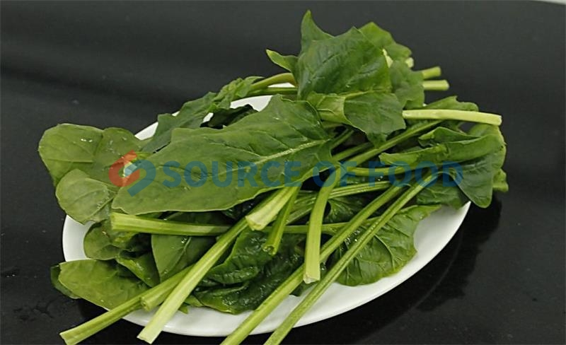The spinach dryer machine does not damage its nutrients when drying the spinach.
