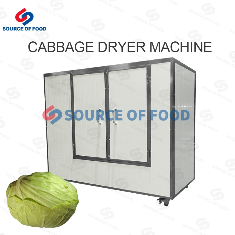 Cabbage Dryer Machine