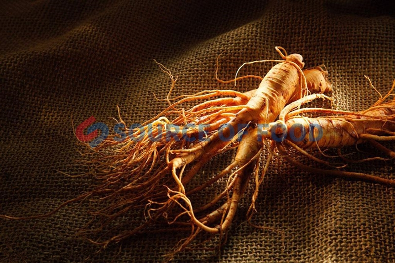 ginseng dryer will not lose the original medicinal value of ginseng