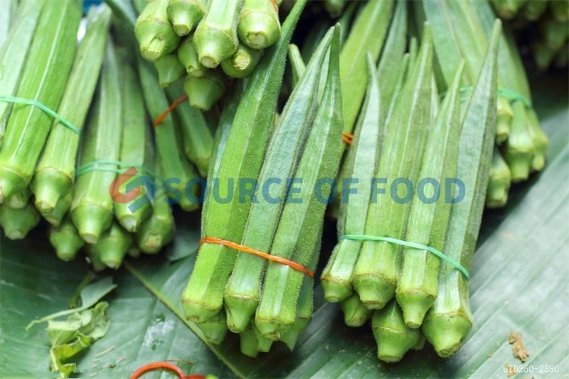 okra dryer machine for sale to India is popular with Indian customers