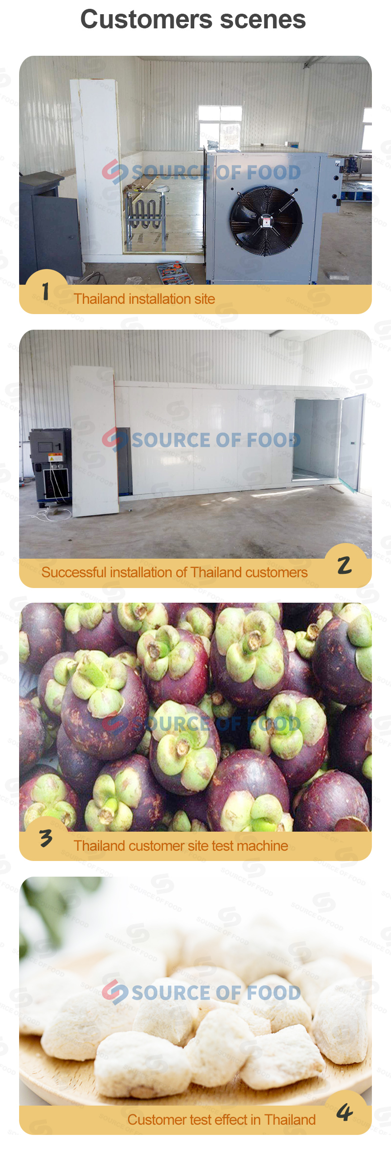 our mangosteen drying equipment is popular in Thailand.