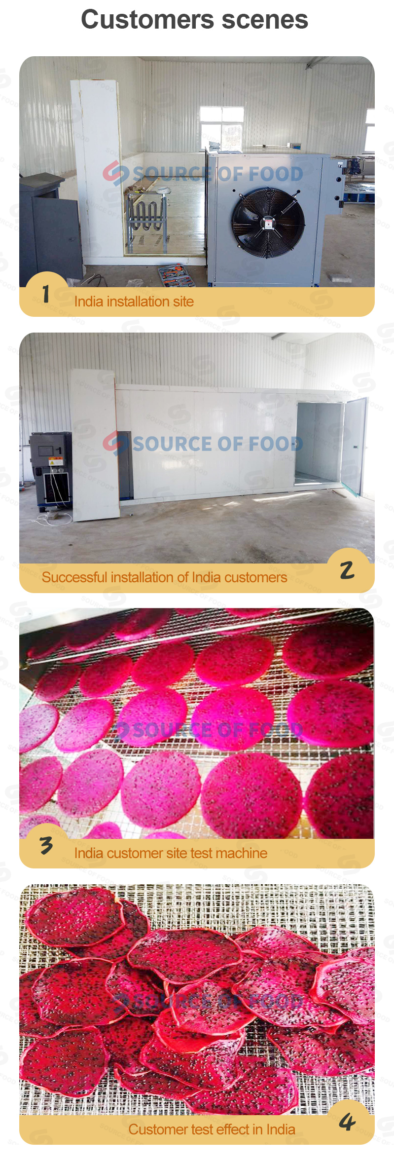 Our pitaya dryer machine is very popular in Thailand and India