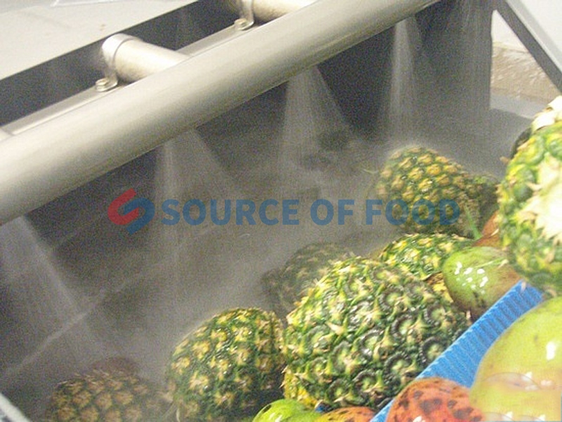 We are pineapple washing machine supplier,Our pineapple washing machine can effectively wash the pineapple skin sludge and stolen goods.
