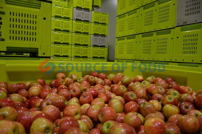 Widely used of apple cold storage