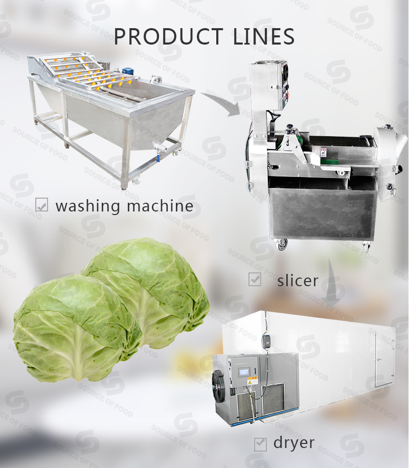 there are cabbage series food processing machine