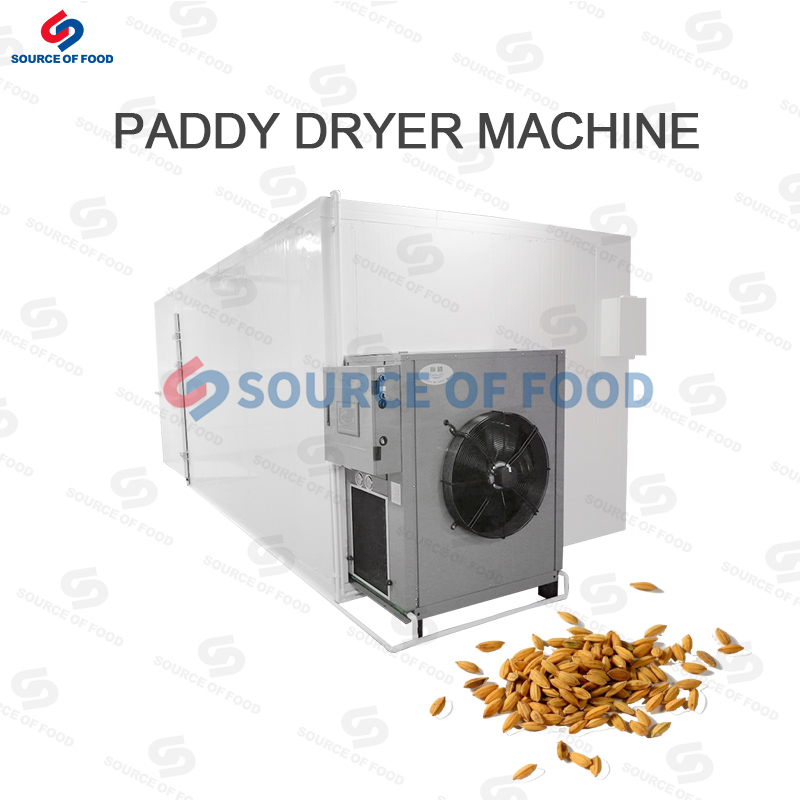 Paddy Dryer Machine